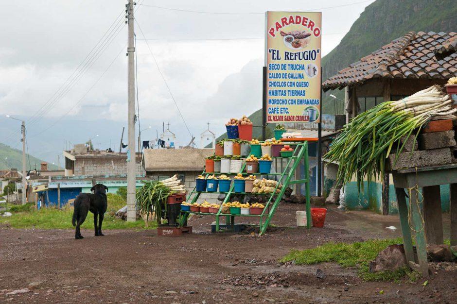 Kleurfoto van een groentewinkel met een (zwerf-) hond op de voorgrond