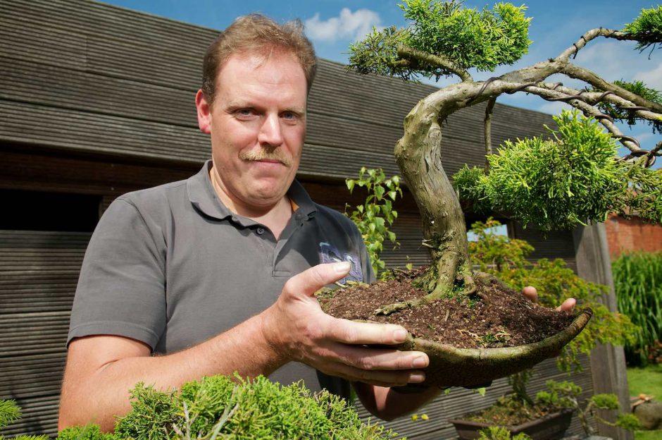 Kleurportret van bonsai-aficionado Geert Vangaever