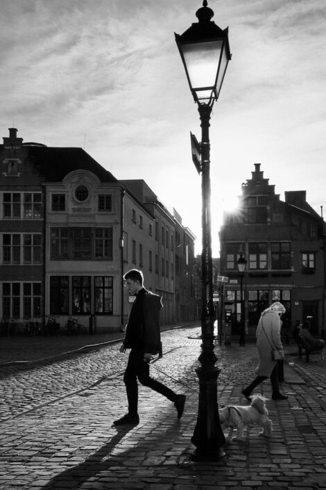 Black & white street photography of homo urbanus, more precisely of a young man walking his dog in back light sunburst